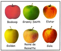 Pomme - fruit - nutrition - chanson enfantine - recette dans Dimanche