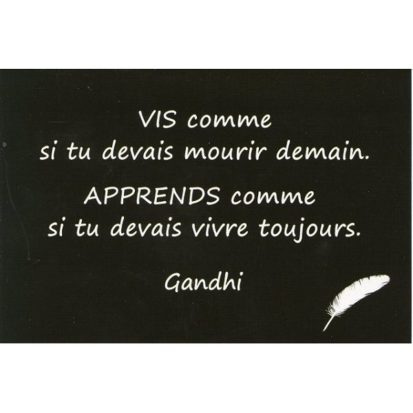 Trop de comètes tue la comète. Citationgandhivie