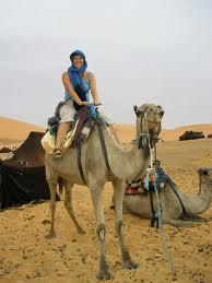 marocchameau